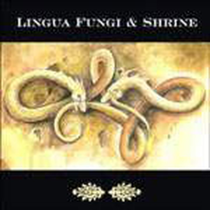 Lingua Fungi / Shrine - Split Digi-CD