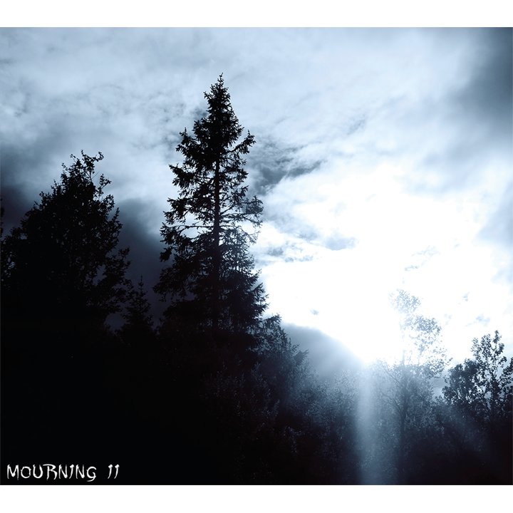 Lost In Desolation - Mourning II Digi-CD