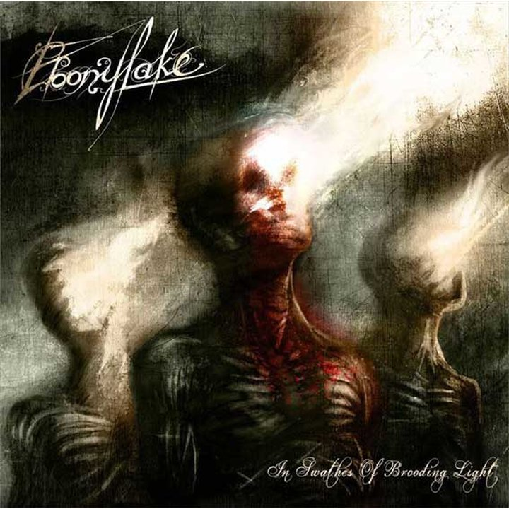 Ebonylake - In Swathes Of Brooding Light CD