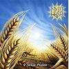 Gray - O Zemle Rodnoj CD