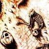 Lysergene / Dust to Dearth - Death of the Sun - Split CD