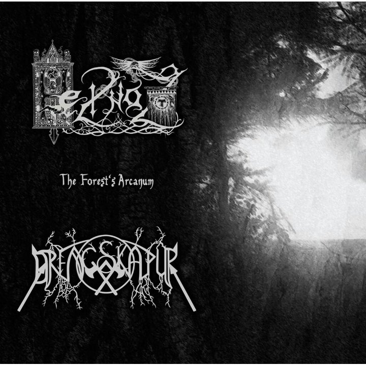 Drengskapur / Heilnoz - The Forest's Arcanum - Split CD