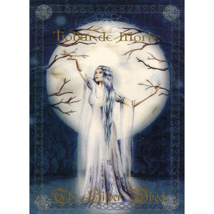 Trobar de Morte - The Silver Wheel A5-Digi-CD