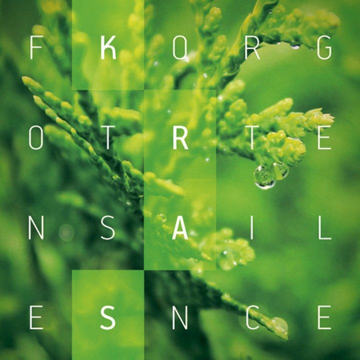Forgotten Silence - Kras CD