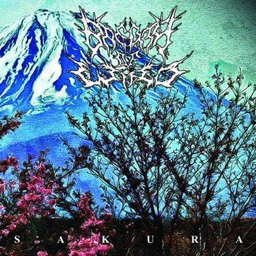 Breath Of Wind – Sakura CD