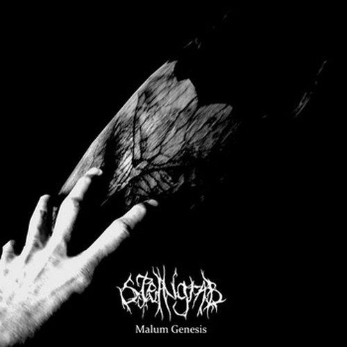 Steingrab - Malum Genesis CD